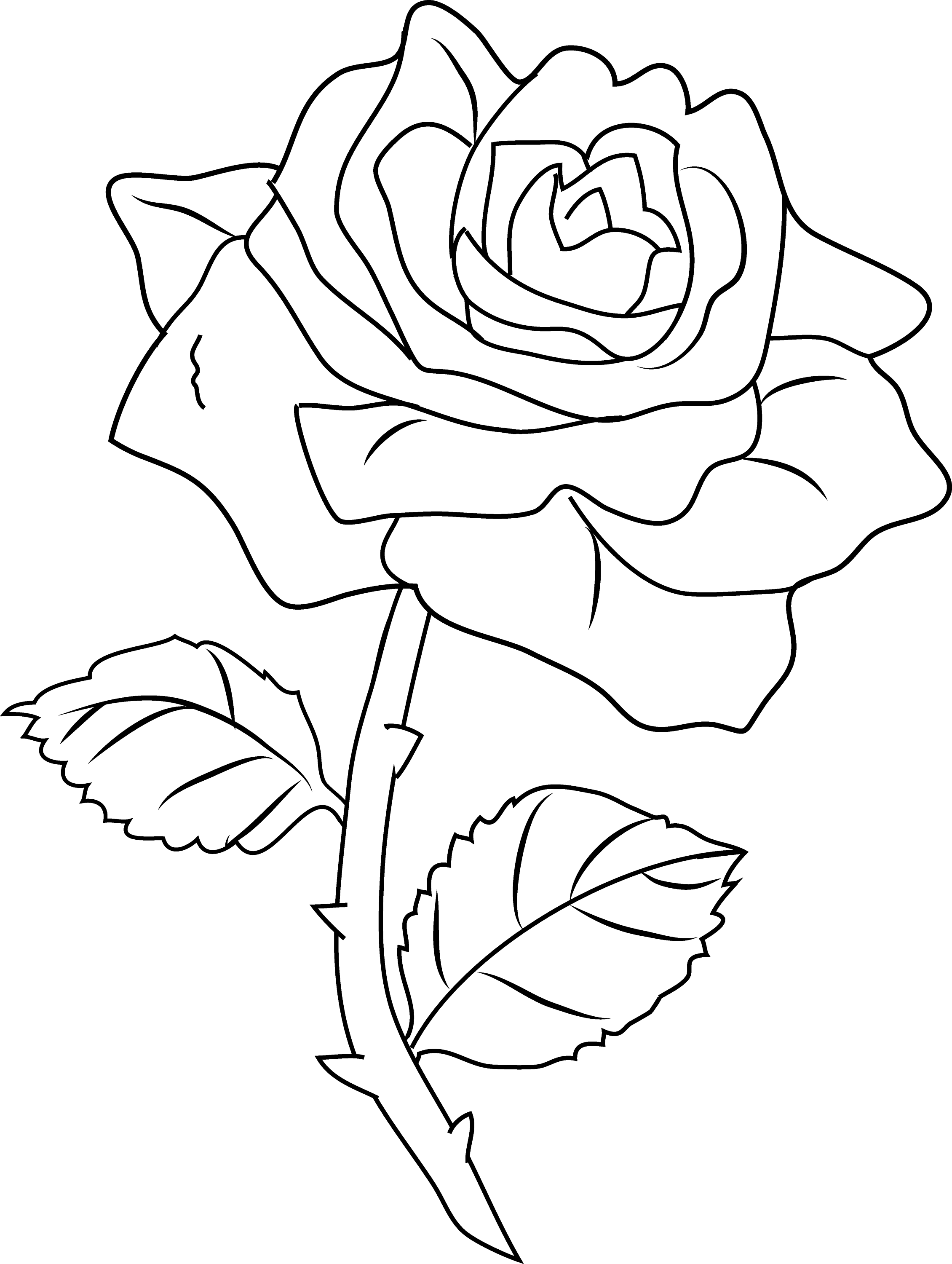 coloring image of a flower pretty rose coloring page free clip art coloring of a flower image