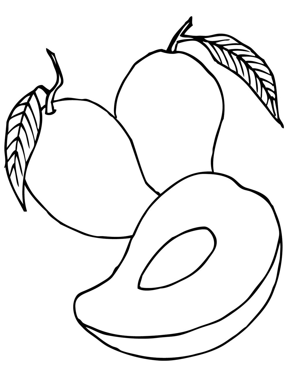 coloring mango template mango coloring pages sketch coloring page mango coloring template