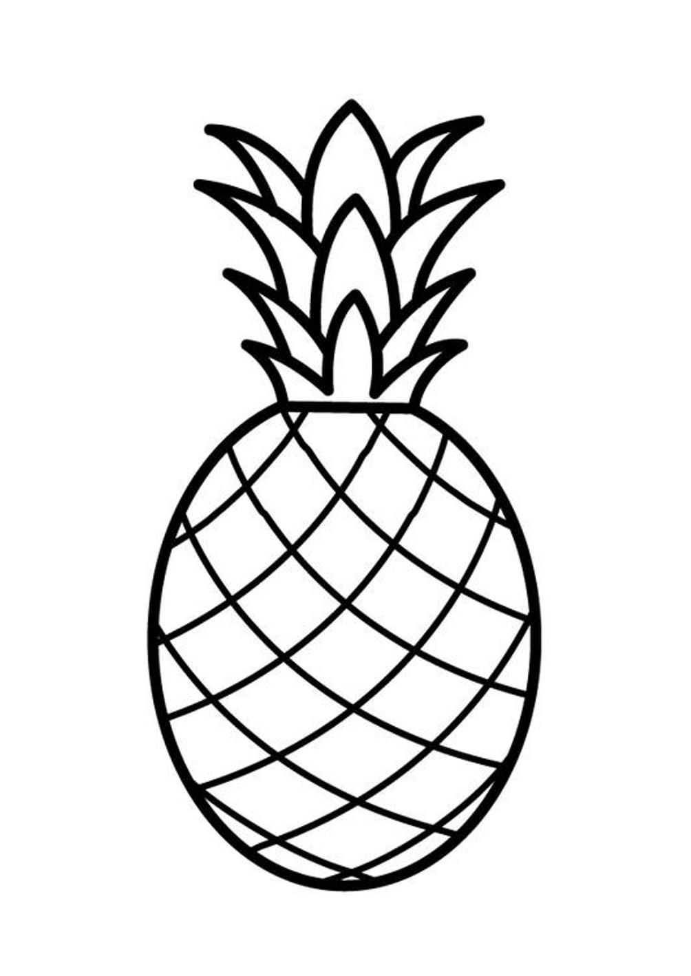 coloring outline fruits fruits outline picture clipart best fruits coloring outline
