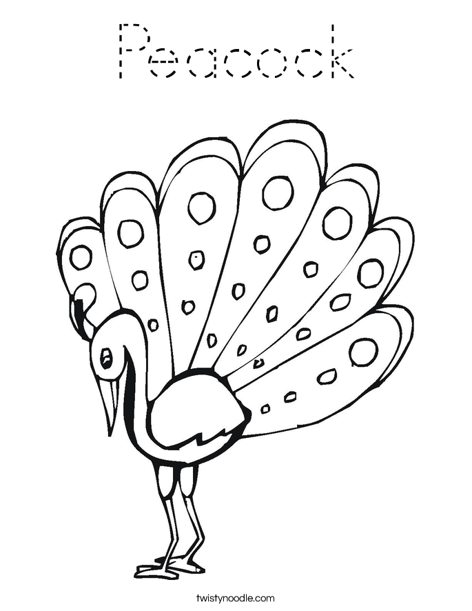 coloring outline image of peacock peacock coloring page tracing twisty noodle of image peacock coloring outline