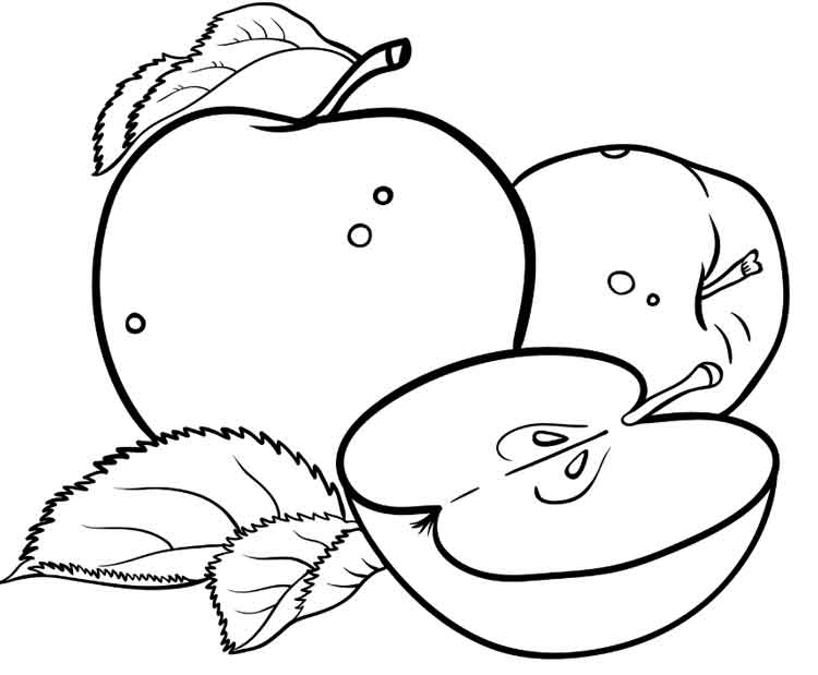 coloring page of an apple apple outline coloring page coloring home coloring page an of apple