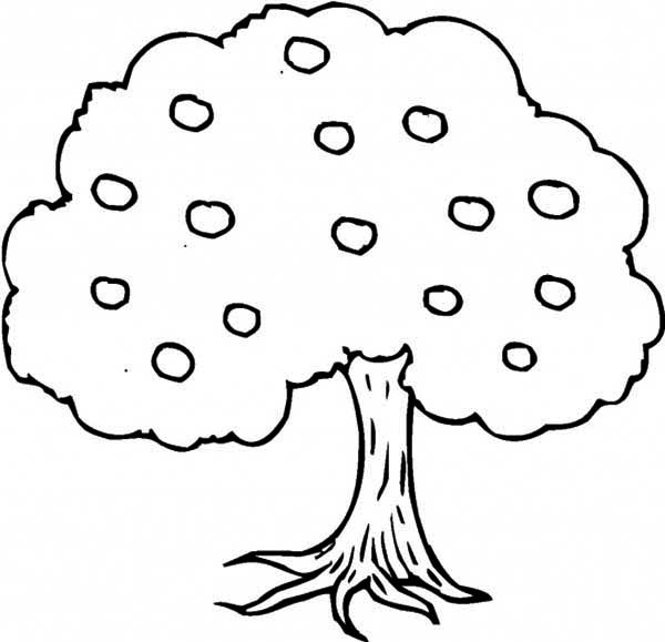 coloring page of apple tree an apple tree coloring page kids play color coloring apple page tree of