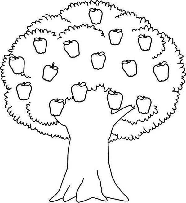 coloring page of apple tree apple tree awesome apple tree coloring page coloring page of tree coloring apple