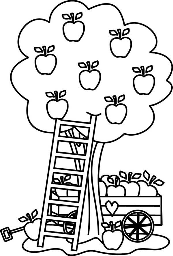 coloring page of apple tree apple tree carriage under an apple tree coloring page apple page tree coloring of