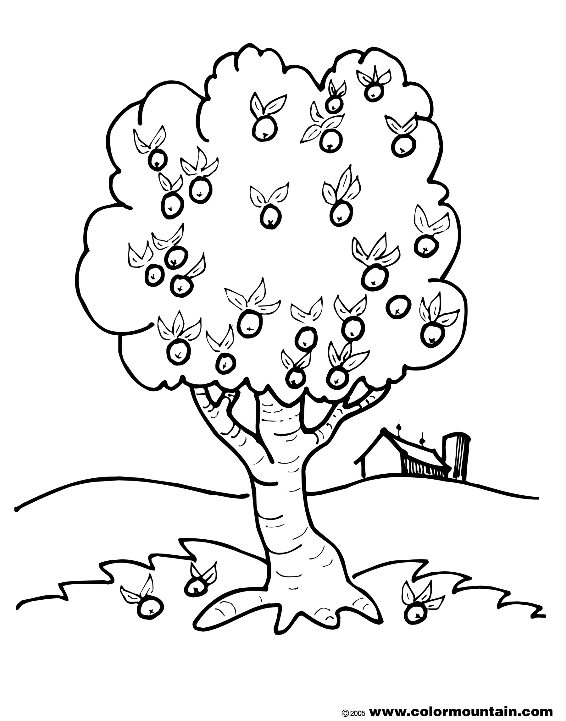 coloring page of apple tree apple tree color page create a printout or activity of coloring tree apple page