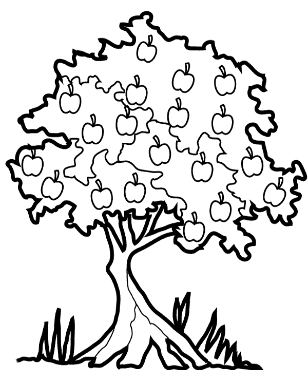 coloring page of apple tree apple tree coloring page woo jr kids activities apple of page coloring tree