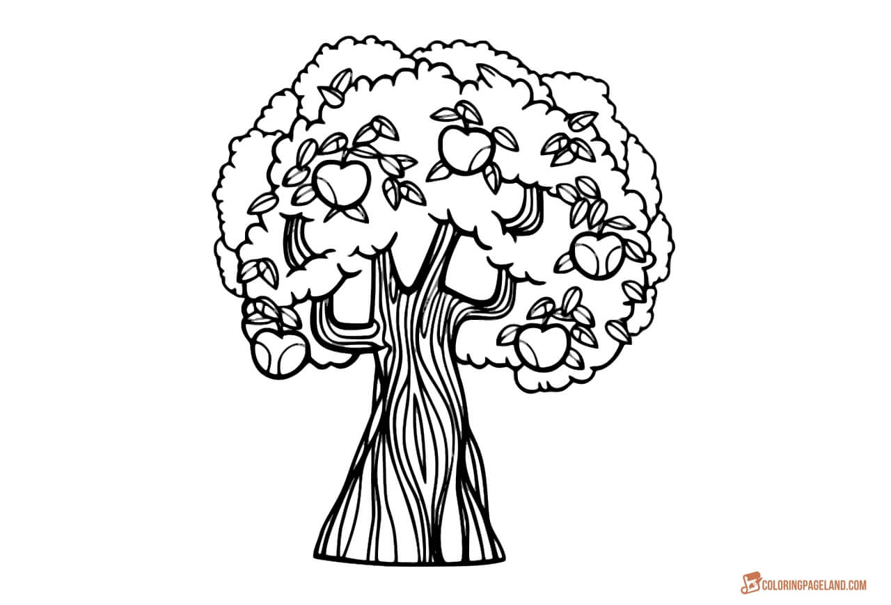 coloring page of apple tree apple tree coloring pages downloadable and printable of page tree apple coloring