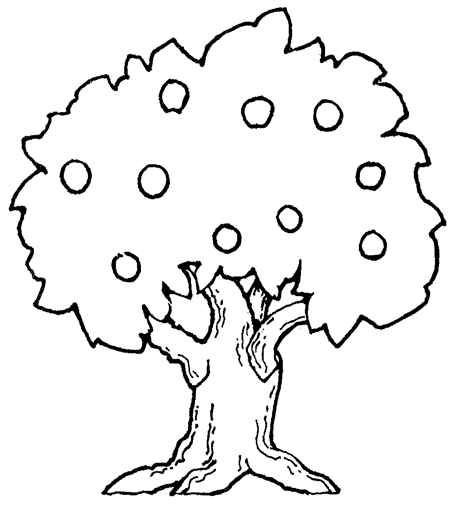 coloring page of apple tree apple tree mormon coloring pages clipart best coloring apple tree page of