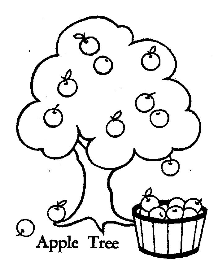 coloring page of apple tree apple tree pictures to color coloring home apple of page tree coloring