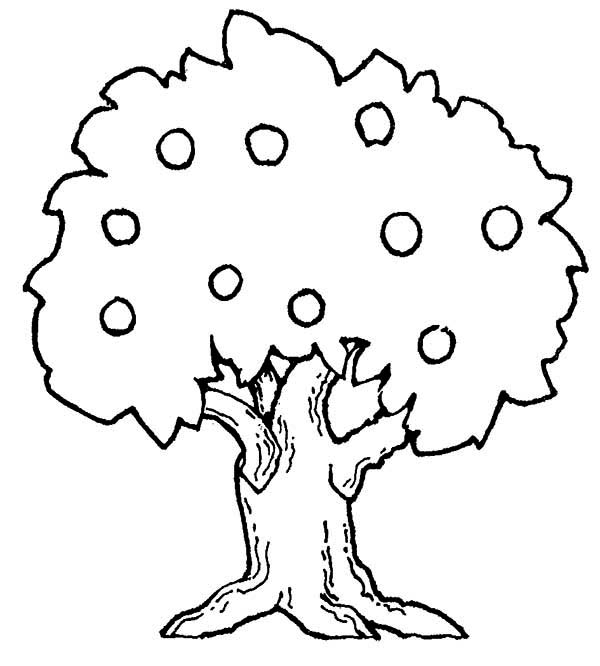 coloring page of apple tree big apple tree coloring page kids play color apple page tree of coloring