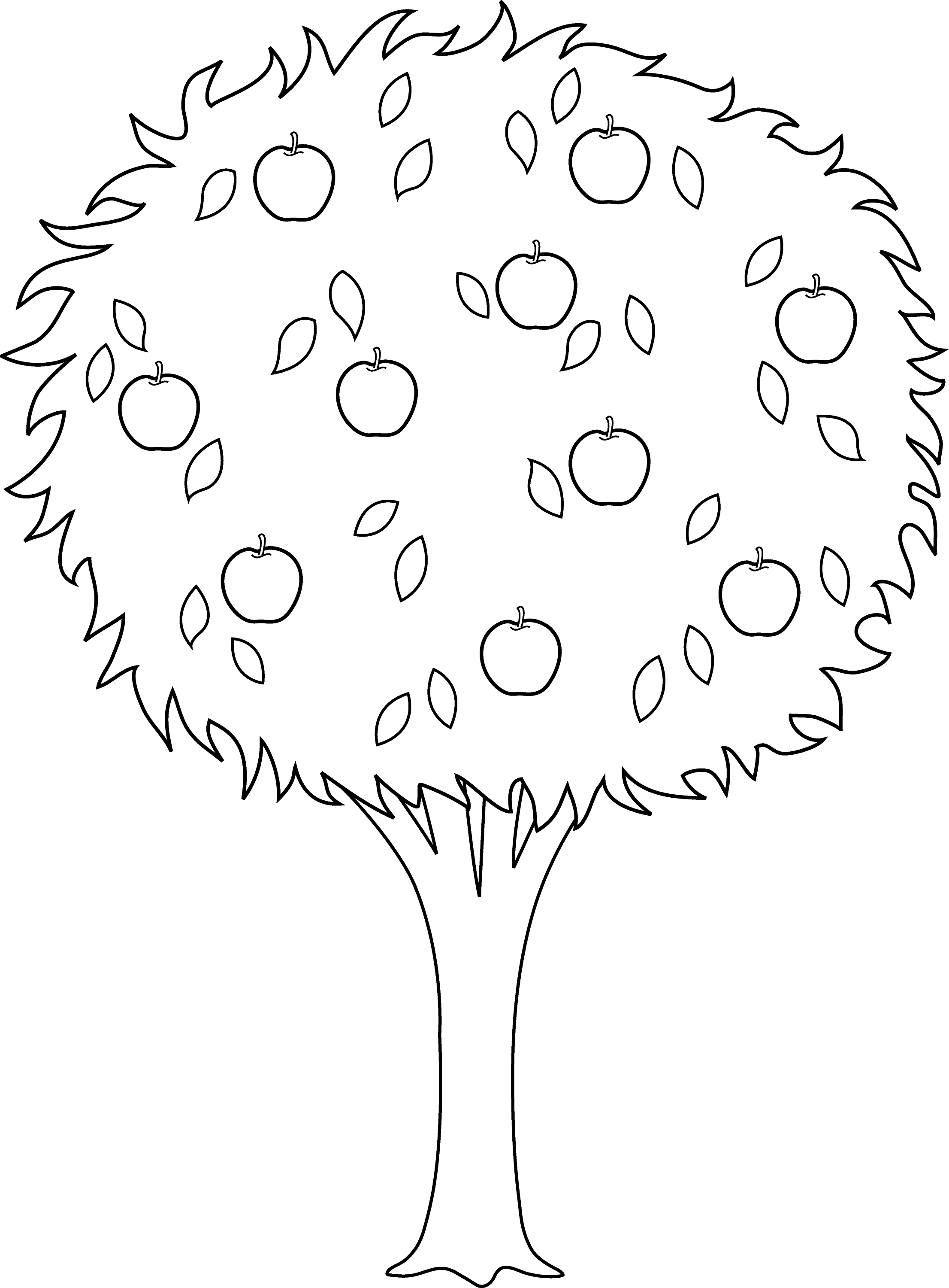 coloring page of apple tree colorable apple tree outline free clip art coloring tree apple page of