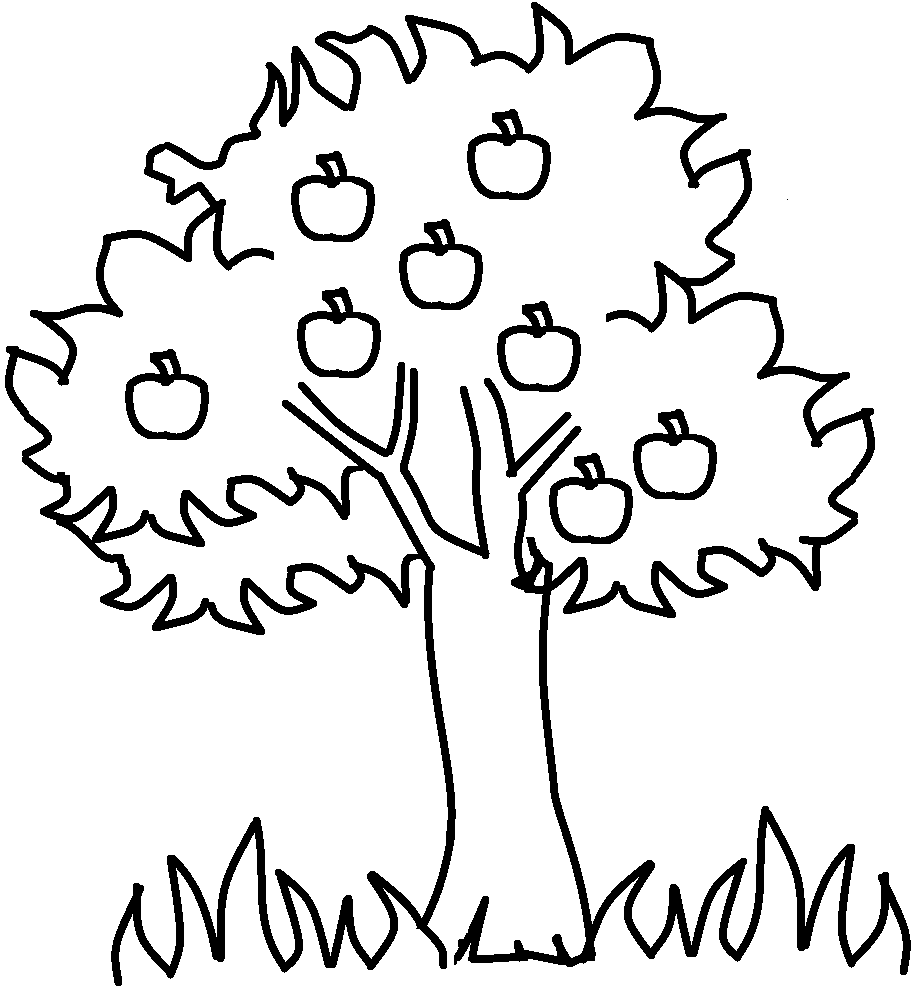 coloring page of apple tree free printable apple coloring pages for kids page apple tree of coloring