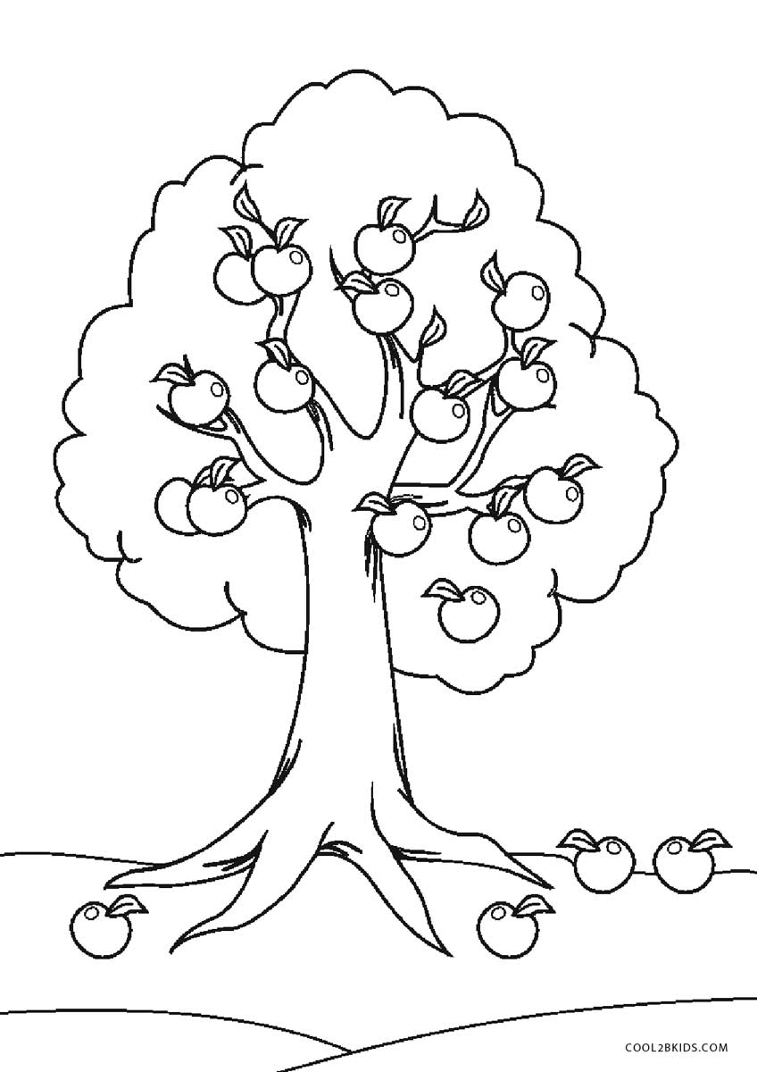 coloring page of apple tree free printable tree coloring pages for kids cool2bkids tree apple of coloring page