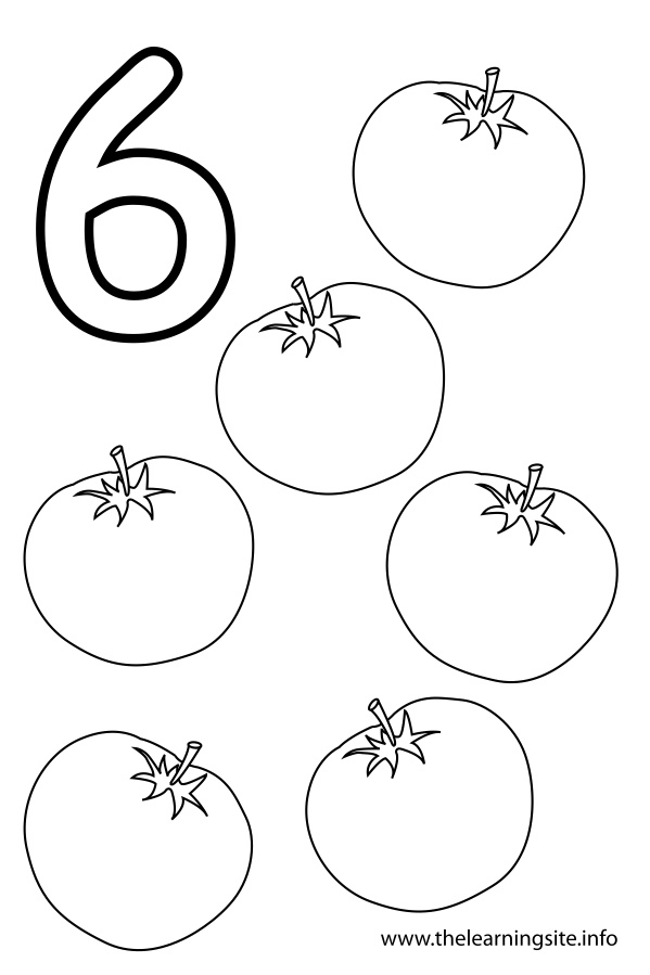 coloring pages 6 number six flashcard 6 tomatoes the learning site coloring pages 6