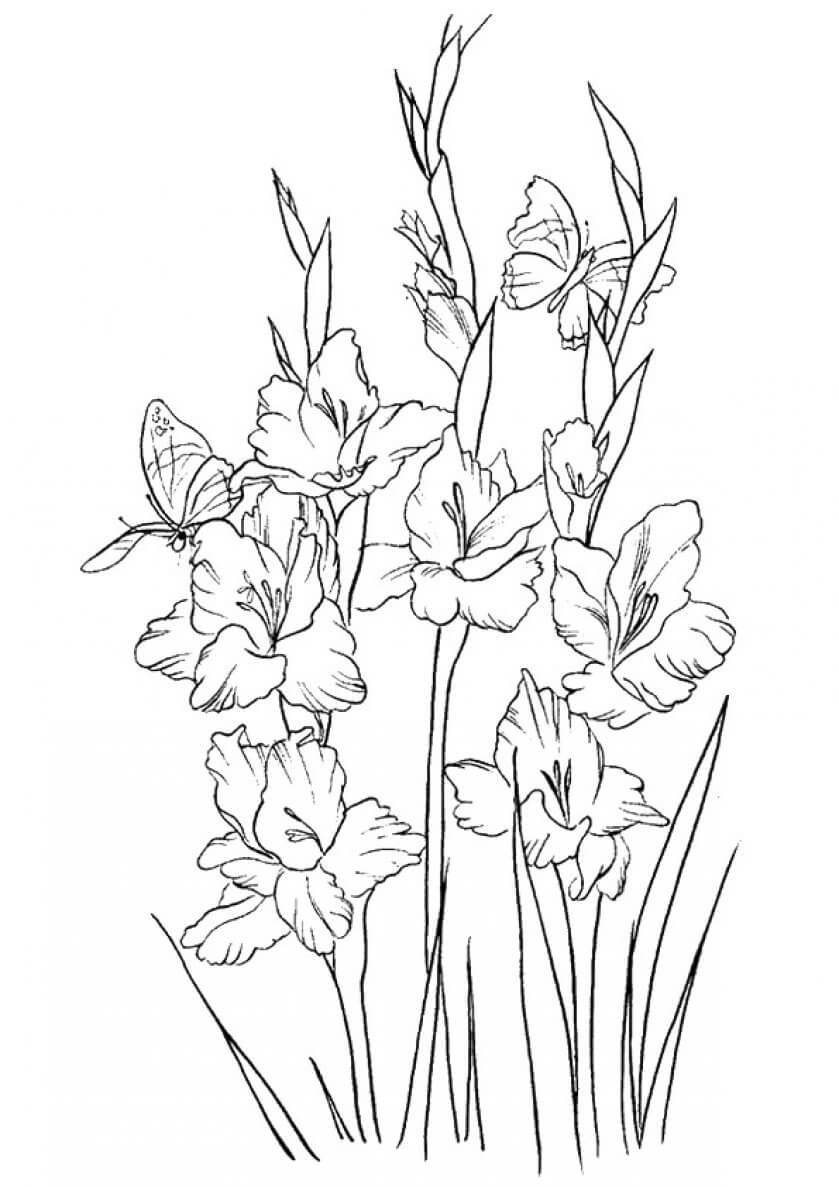 coloring pages of a flower beautiful printable flowers coloring pages pages of coloring a flower