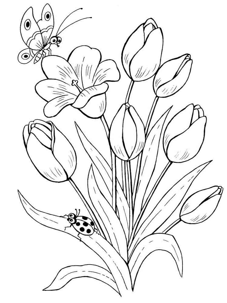 coloring pages of a flower tulip coloring pages download and print tulip coloring pages pages flower coloring a of