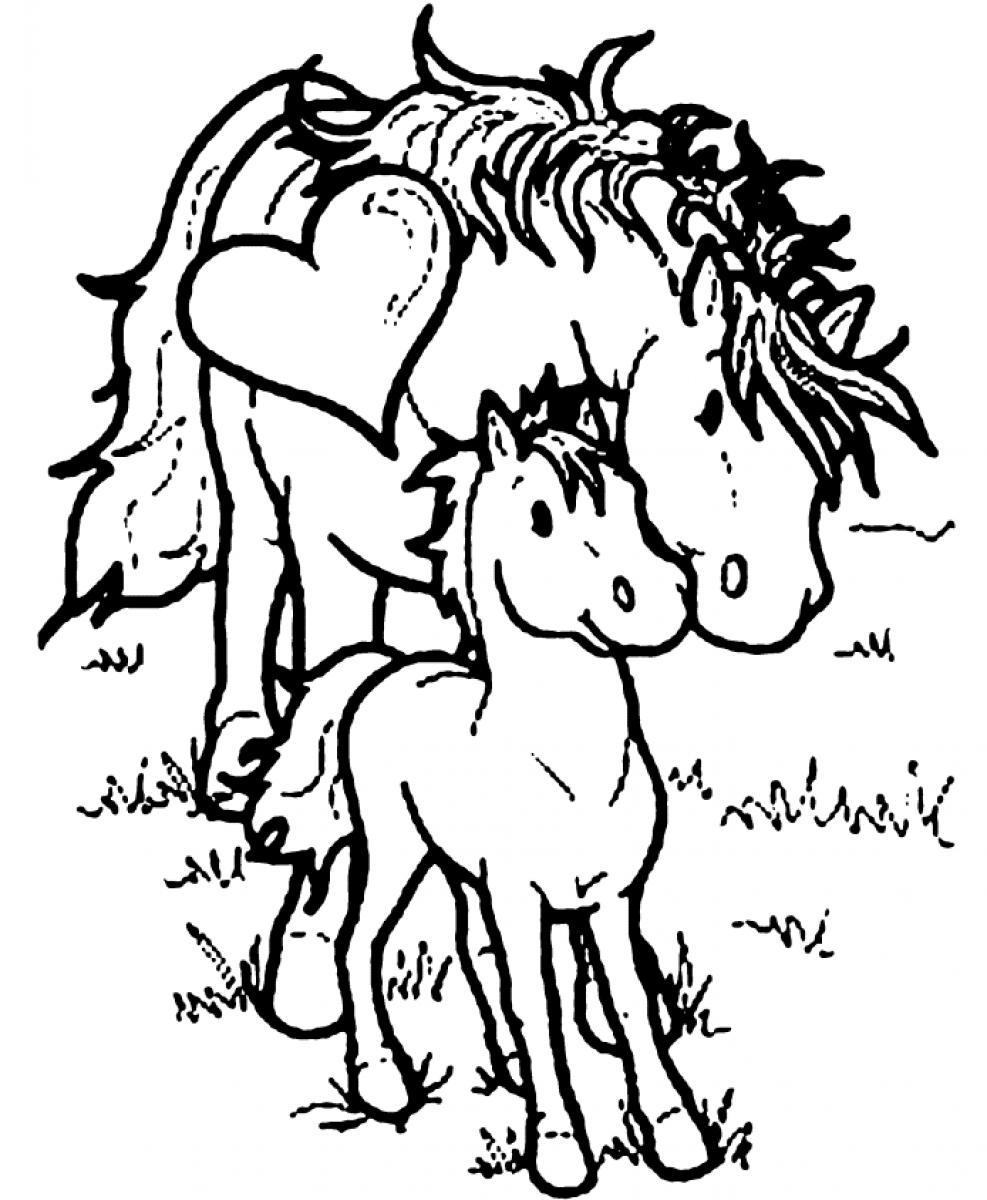 coloring pages of horses to print free horse coloring pages coloring horses pages print of to
