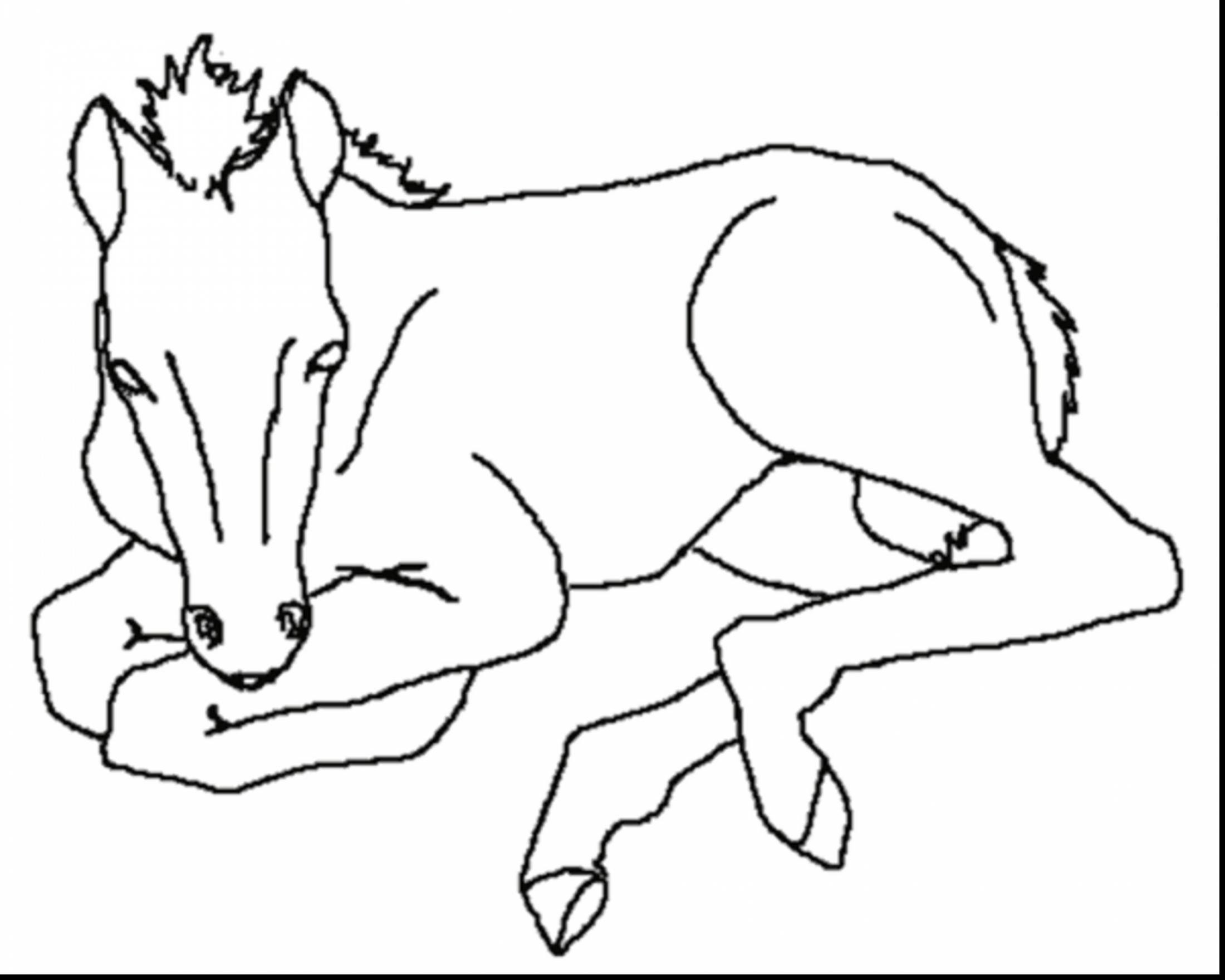 coloring pages of horses to print horse coloring pages preschool and kindergarten of coloring print pages to horses