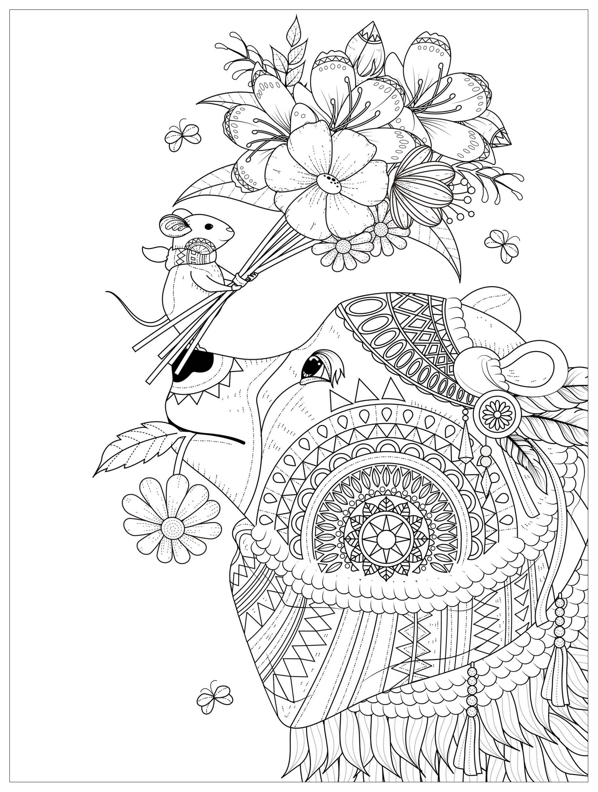 coloring pages of nature and animals african rainforest and wildlife labeled coloring nature pages nature and coloring of animals