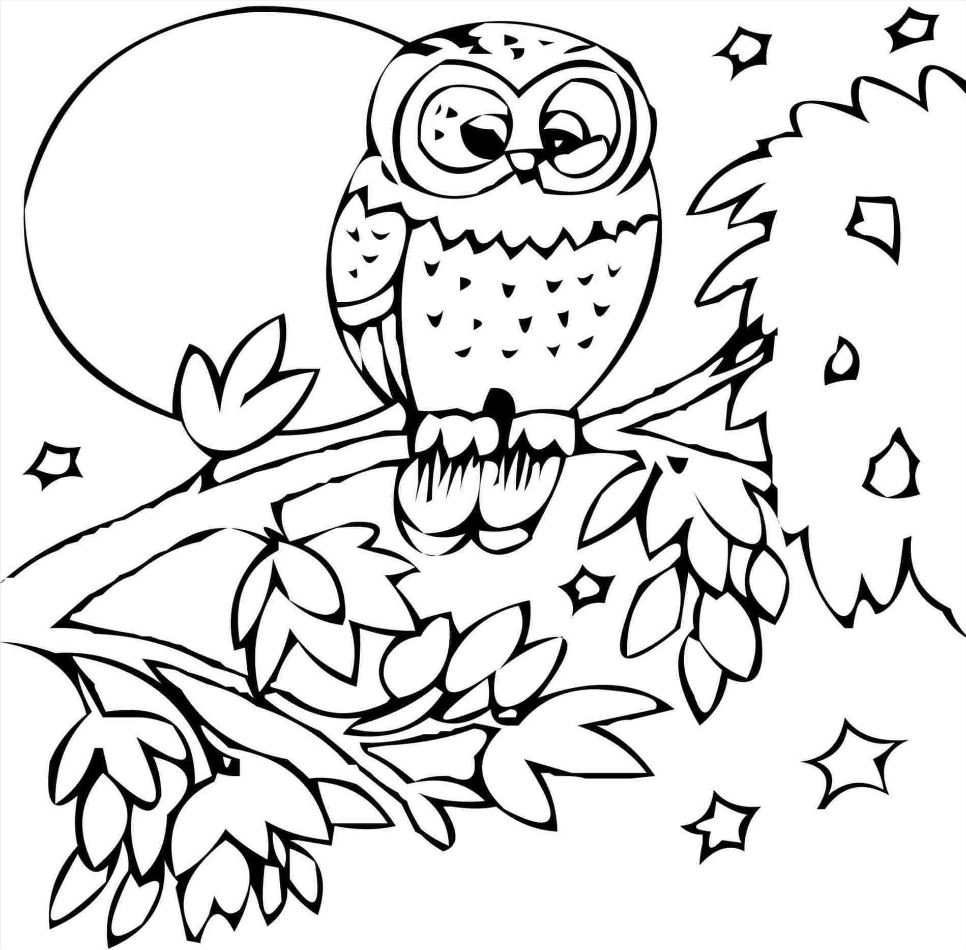 coloring pages of nature and animals backyard animals and nature coloring books coloring coloring of and nature pages animals
