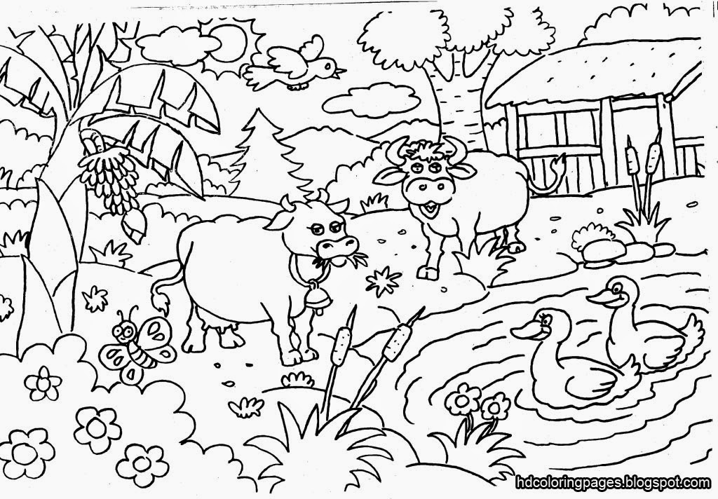 coloring pages of nature and animals backyard animals and nature coloring books free coloring of nature and coloring pages animals