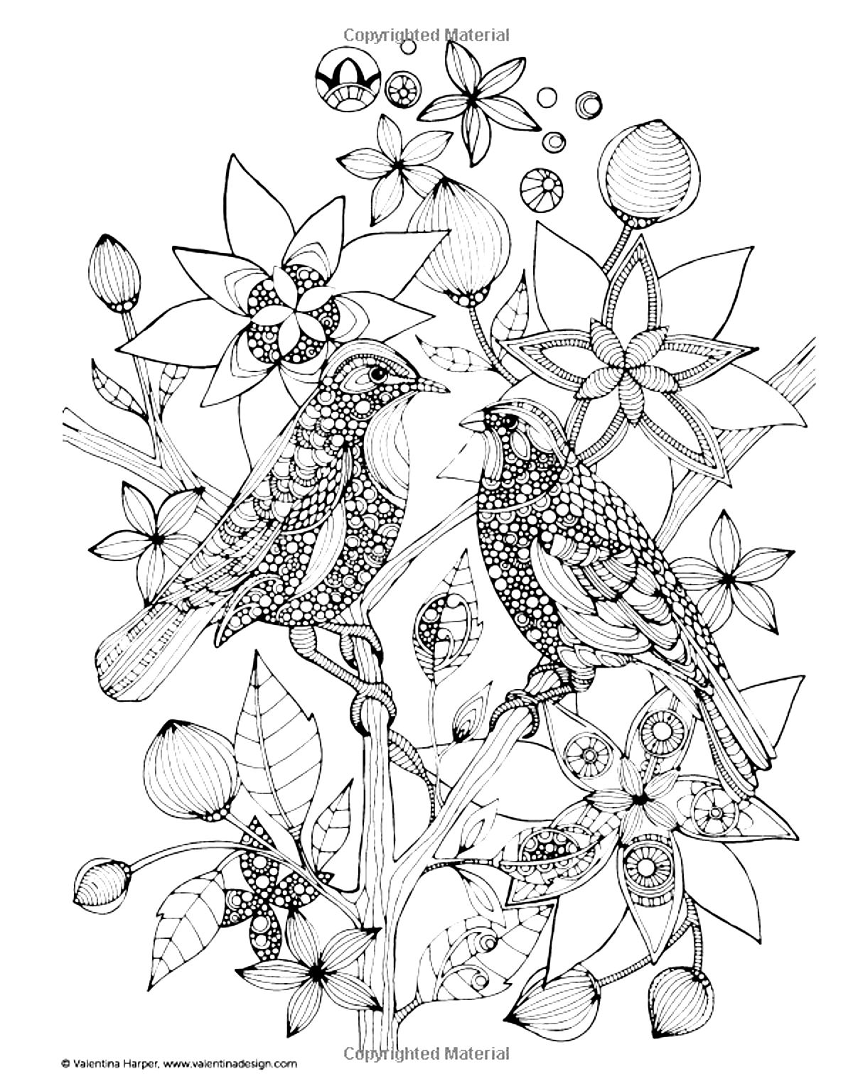 coloring pages of nature and animals giraffe head with flowers giraffes adult coloring pages of animals nature coloring pages and