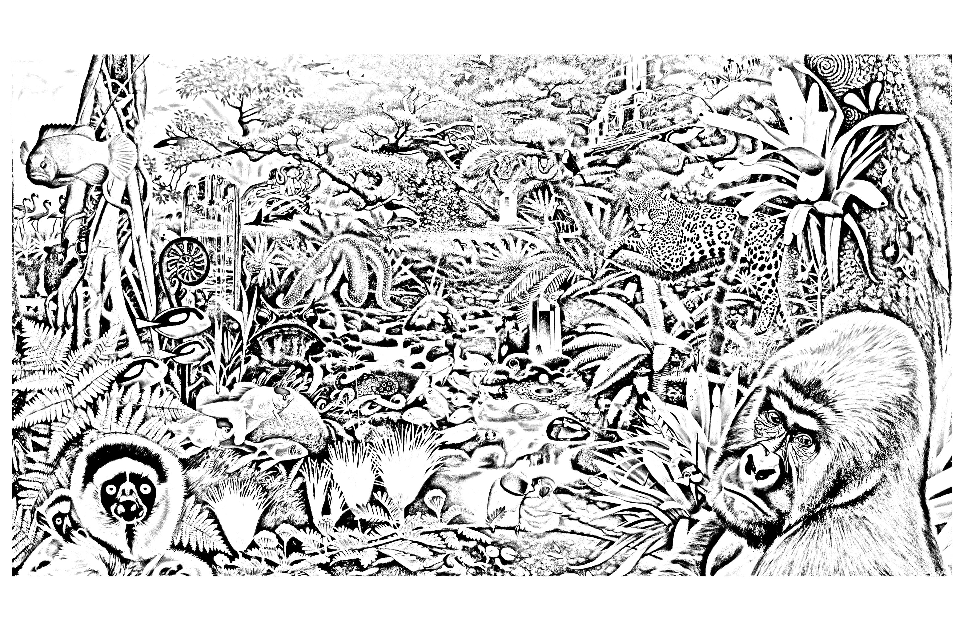 coloring pages of nature and animals nature forest autumn animals coloring page kindergarten animals nature of and coloring pages