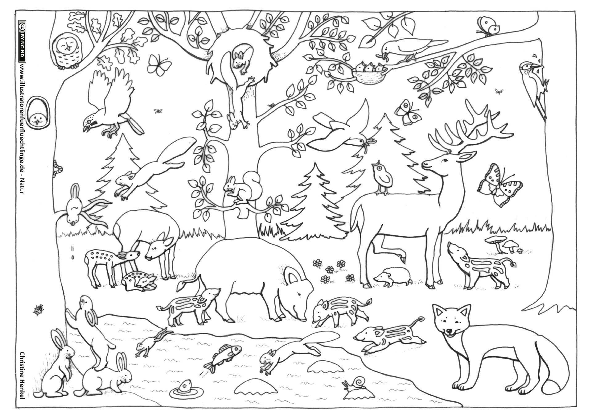 coloring pages of nature and animals nature scenes drawing at getdrawings free download coloring of nature and pages animals
