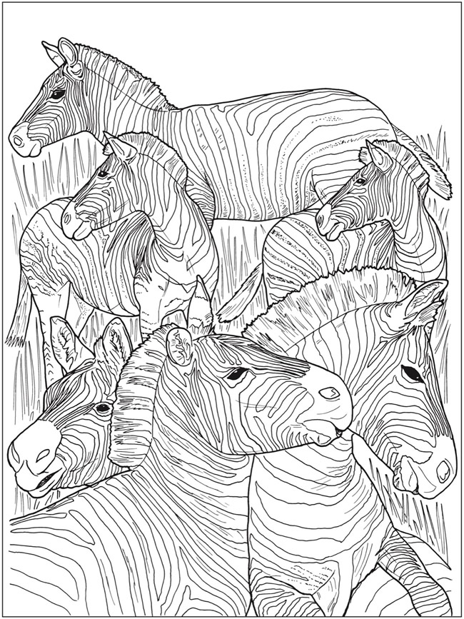 coloring pages of nature and animals select from 31899 printable crafts of cartoons animals coloring animals pages and nature of