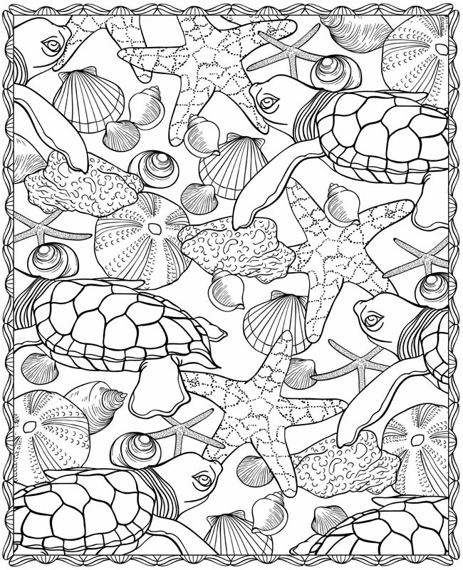 coloring pages of sea life free under the sea coloring pages to print for kids pages of life sea coloring