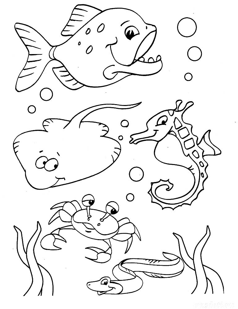 coloring pages of sea life intricate coloring pages coreyshead looking at the of sea pages coloring life