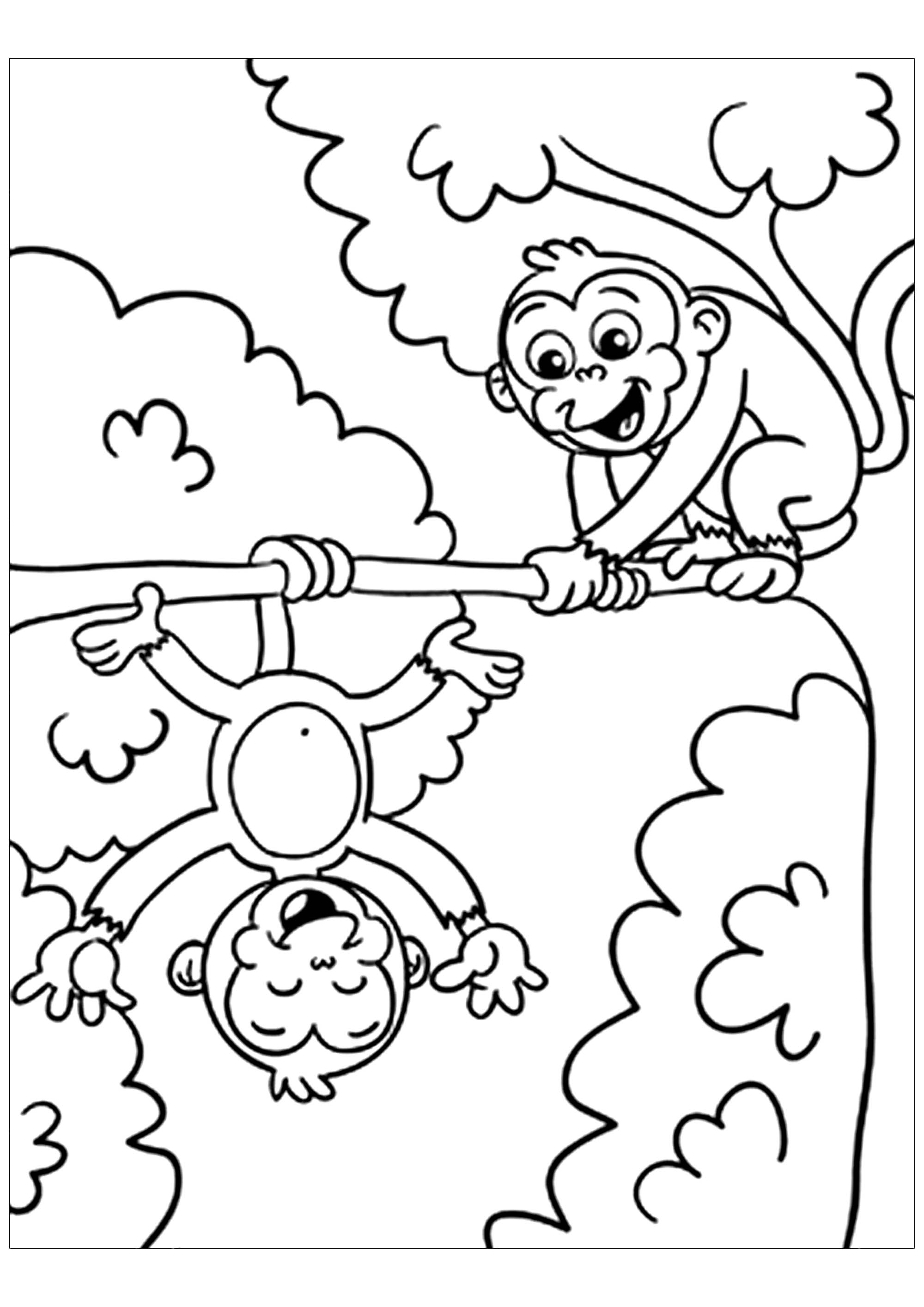 coloring picture of monkey monkeys to download monkeys kids coloring pages monkey coloring of picture