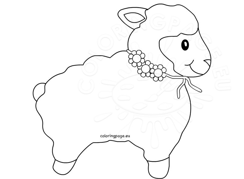 coloring sheep drawing colour lamb outline sheep clip art coloring page sheep colour coloring drawing