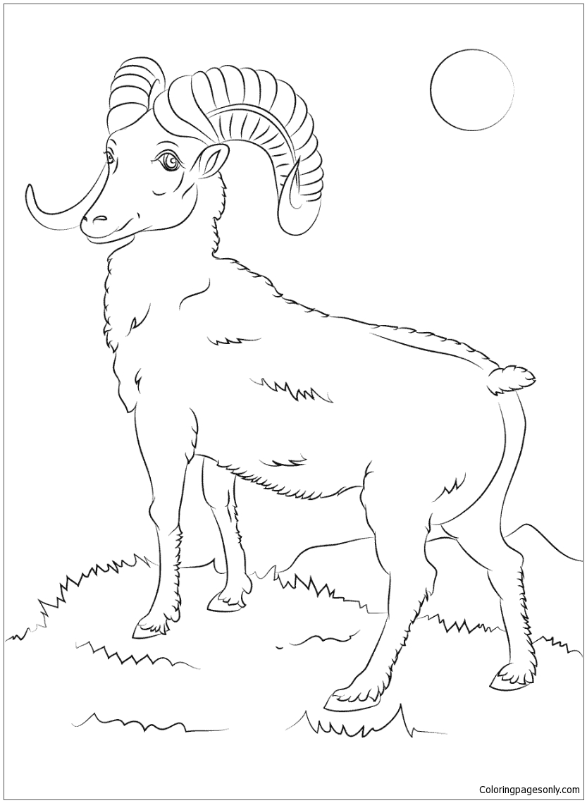 coloring sheep drawing colour shaun the sheep coloring pages for kids to print for free sheep colour coloring drawing