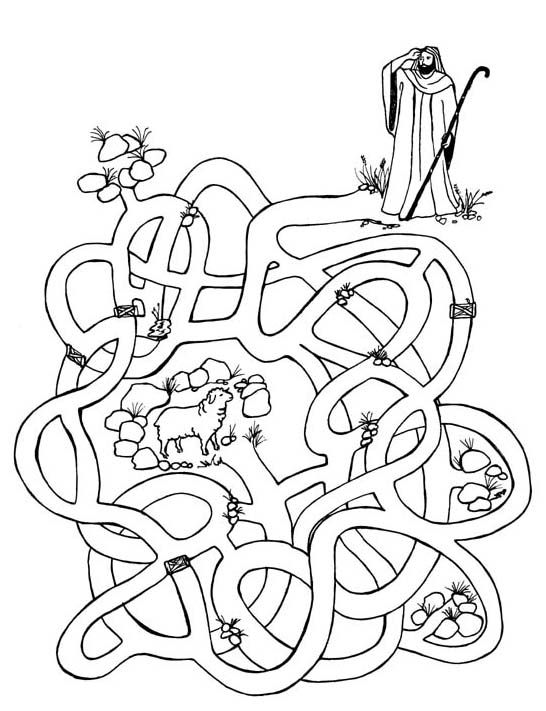 coloring sheep drawing colour sheep coloring pages to print at getcoloringscom free sheep coloring drawing colour