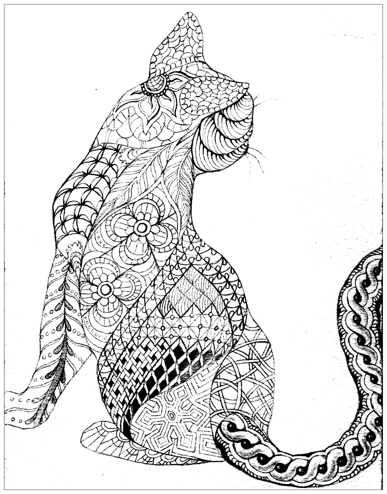 coloring sheets cats free printable cat coloring pages for kids coloring sheets cats