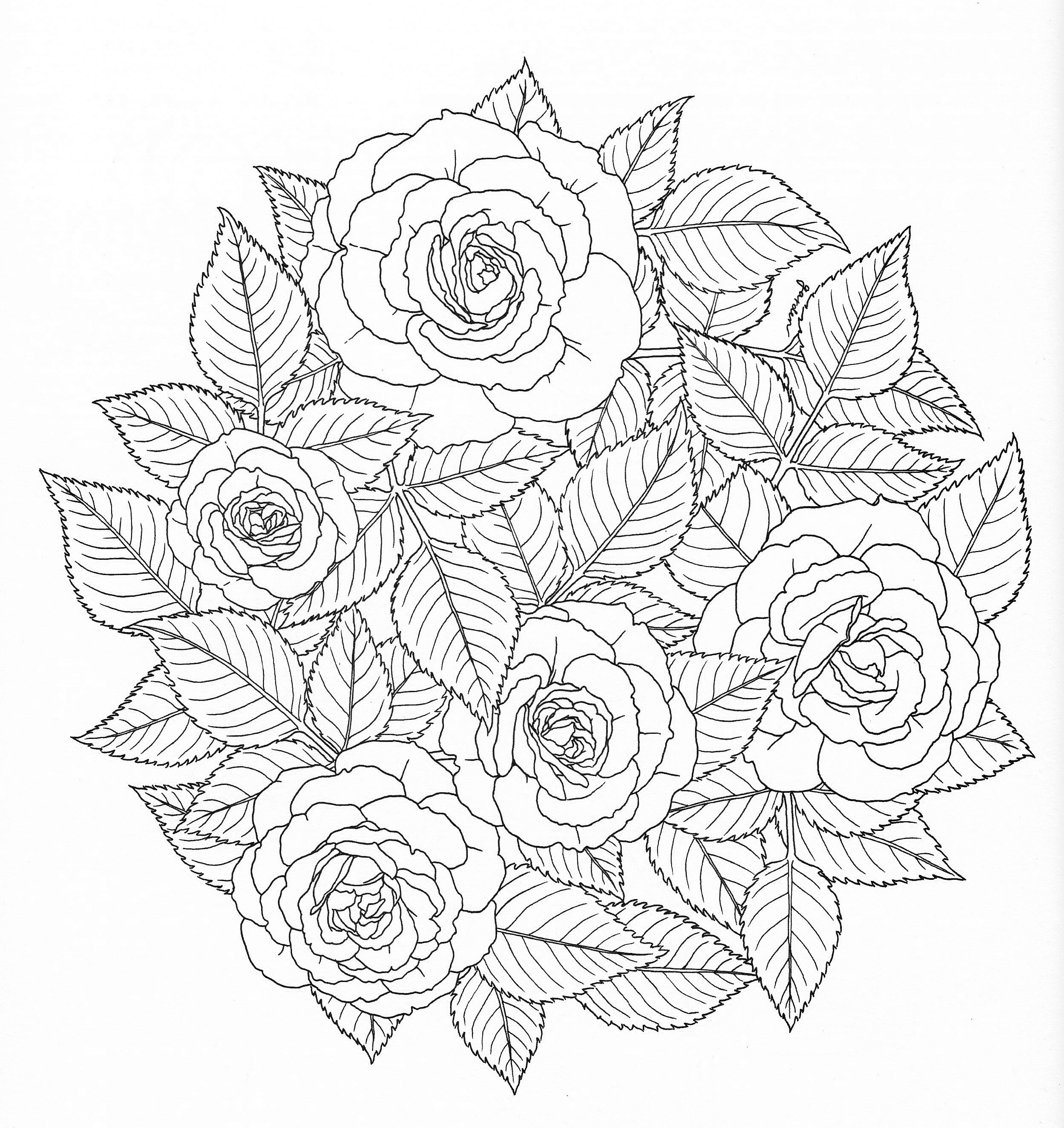 coloring stencils free printable tattoo stencils tattoo design gallery stencils coloring