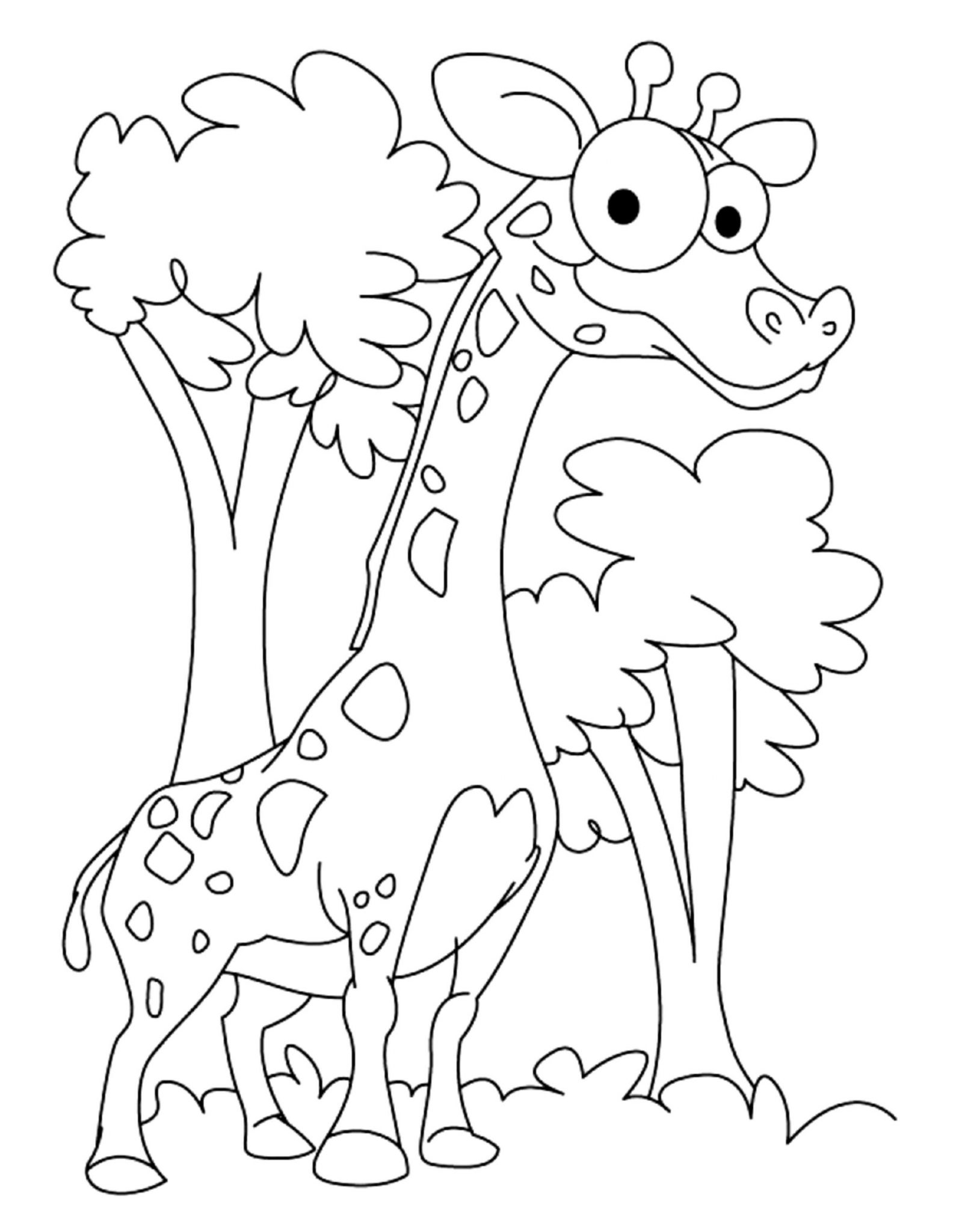 colouring pages of giraffe free printable giraffe coloring pages for kids colouring of pages giraffe