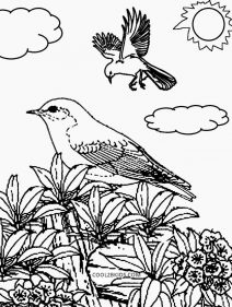 colouring pages of nature free printable nature coloring pages for kids best nature pages colouring of