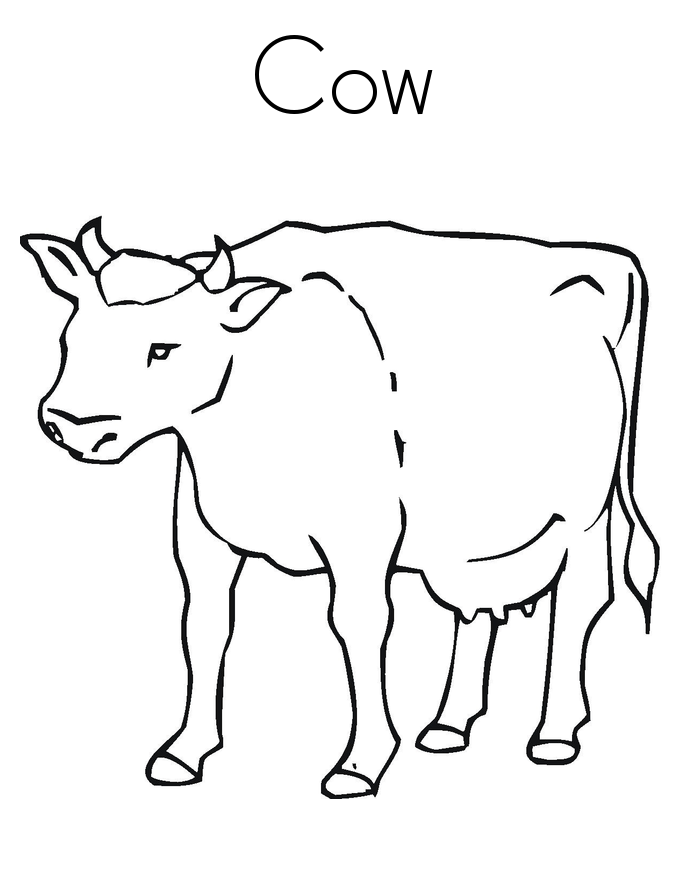 cow coloring pics free printable cow coloring pages for kids cool2bkids pics coloring cow