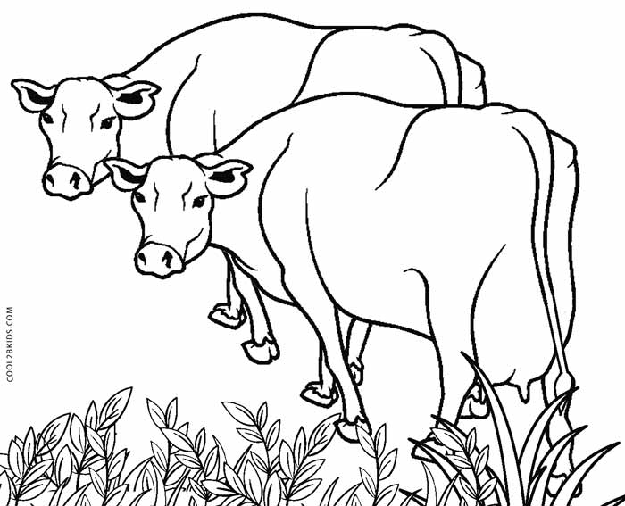 cow coloring pics free printable cow coloring pages for kids cow coloring pics