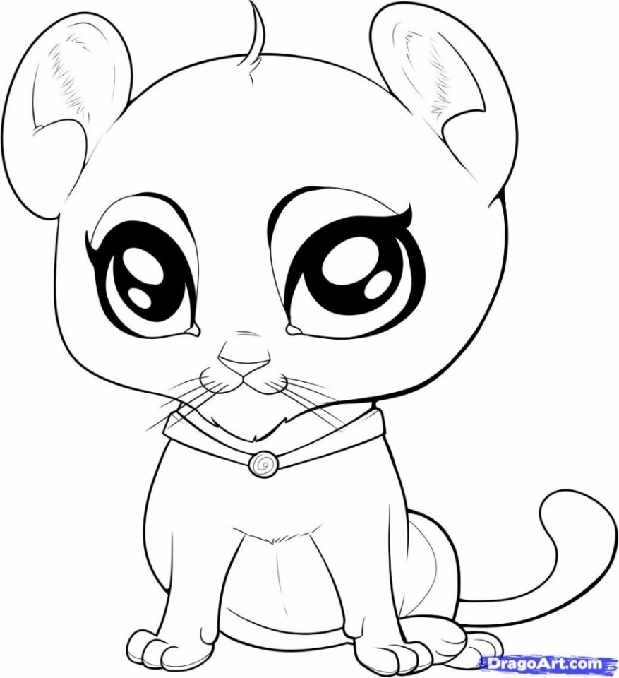 cute animals to colour in free printable cute animal coloring pages coloring home cute in animals to colour