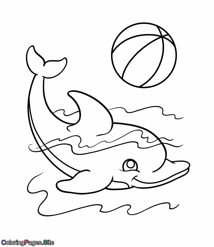 cute hard dolphin coloring pages cute dolphin playing with a ball coloring page animal coloring hard cute dolphin pages