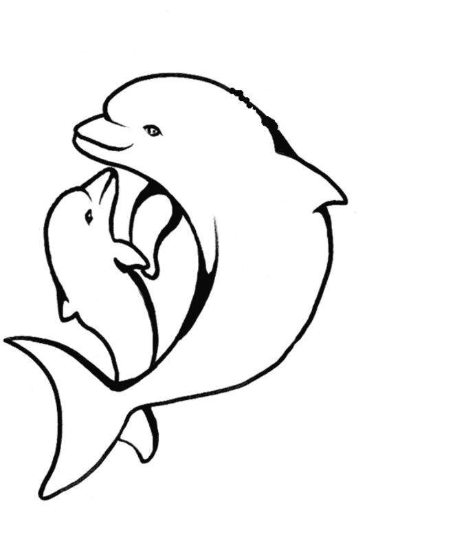 cute hard dolphin coloring pages dolphin very cute and cool coloring page dolphin hard pages coloring dolphin cute