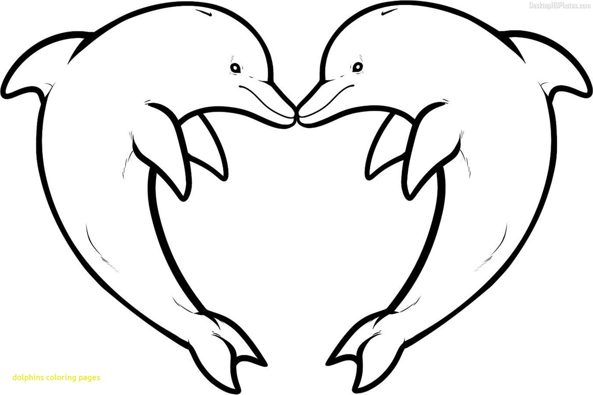cute hard dolphin coloring pages dolphins happy dolphin swimming coloring page coloring dolphin hard pages cute