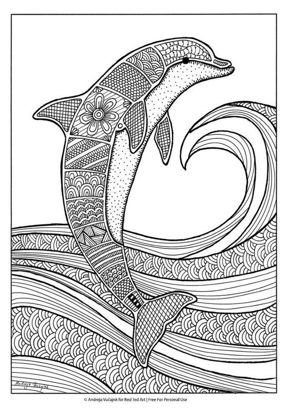 cute hard dolphin coloring pages free colouring pages for grown ups dolphins dolphin coloring cute pages dolphin hard