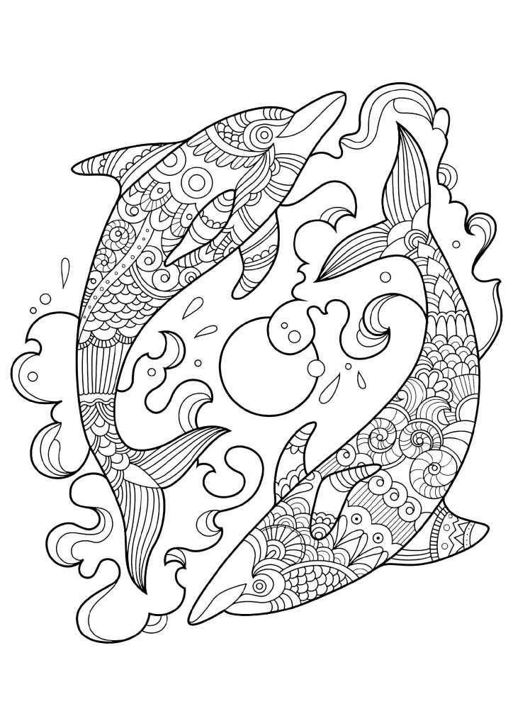 cute hard dolphin coloring pages free dolphin coloring pages coloring hard dolphin pages cute