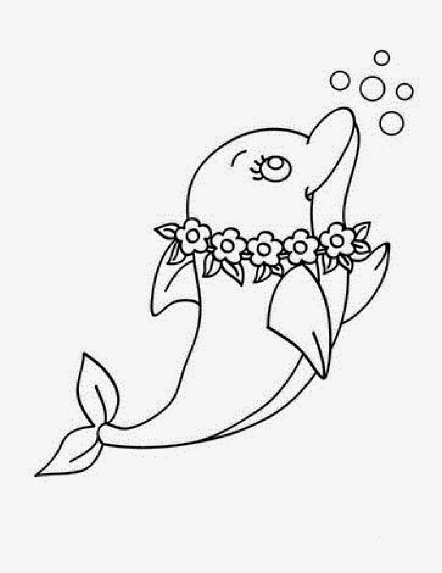 cute hard dolphin coloring pages pin on cute animals dolphin pages coloring hard cute