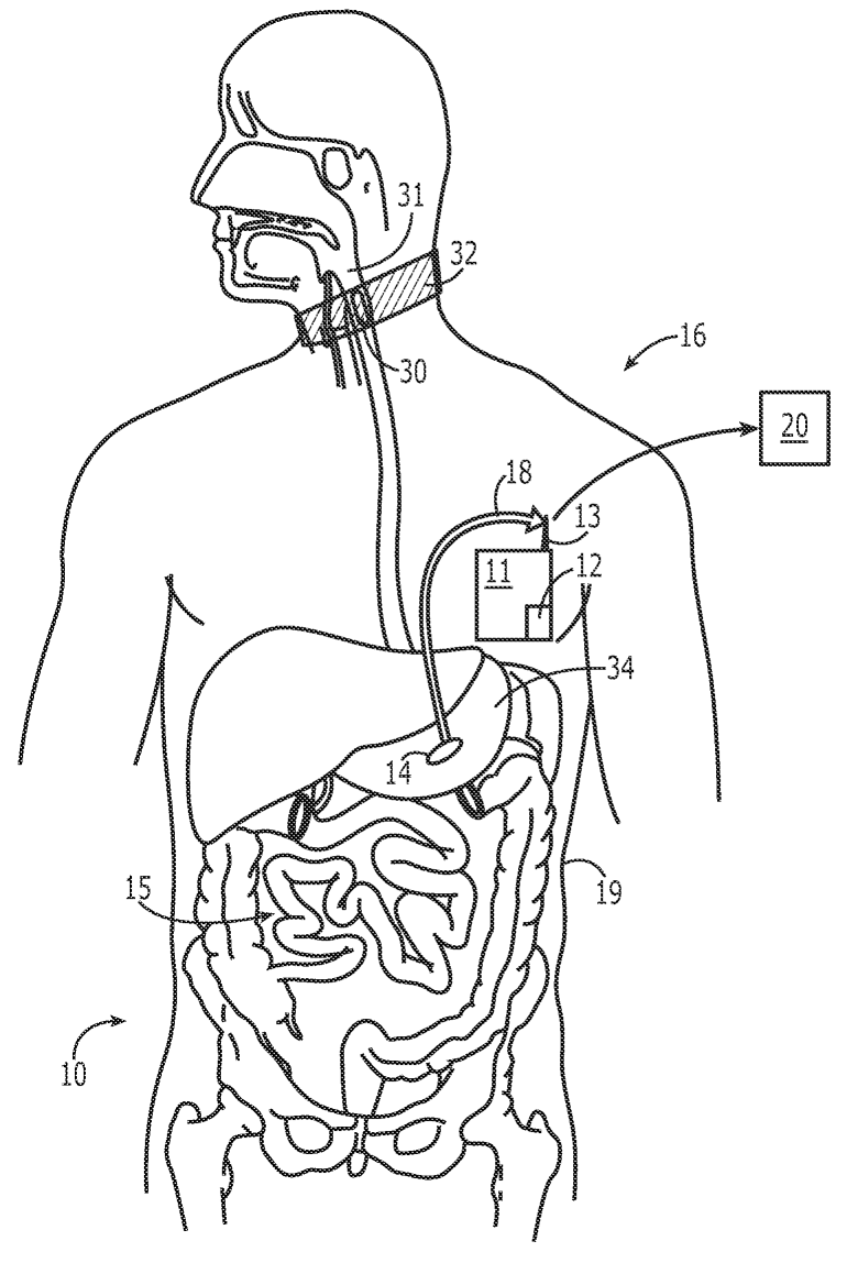 digestive system coloring pages image result for label the digestive system for grade 4 pages system coloring digestive