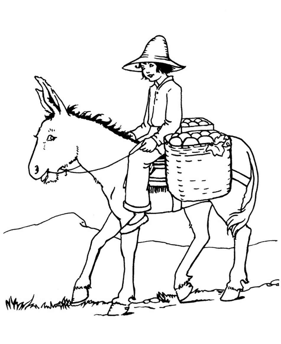 donkey colouring pages donkey coloring page getcoloringpagescom pages colouring donkey